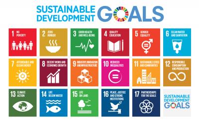 Hoe werkt het Nederlandse maatschappelijk middenveld aan de SDG's?